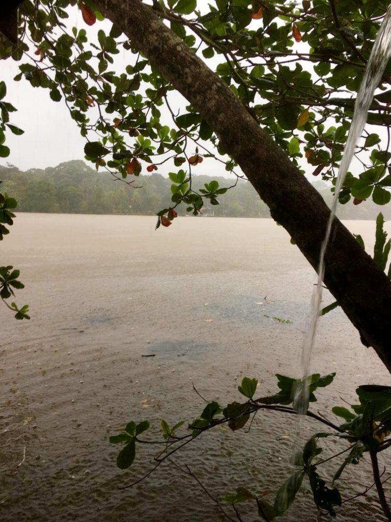 Costa-Rica-Tortuguero-