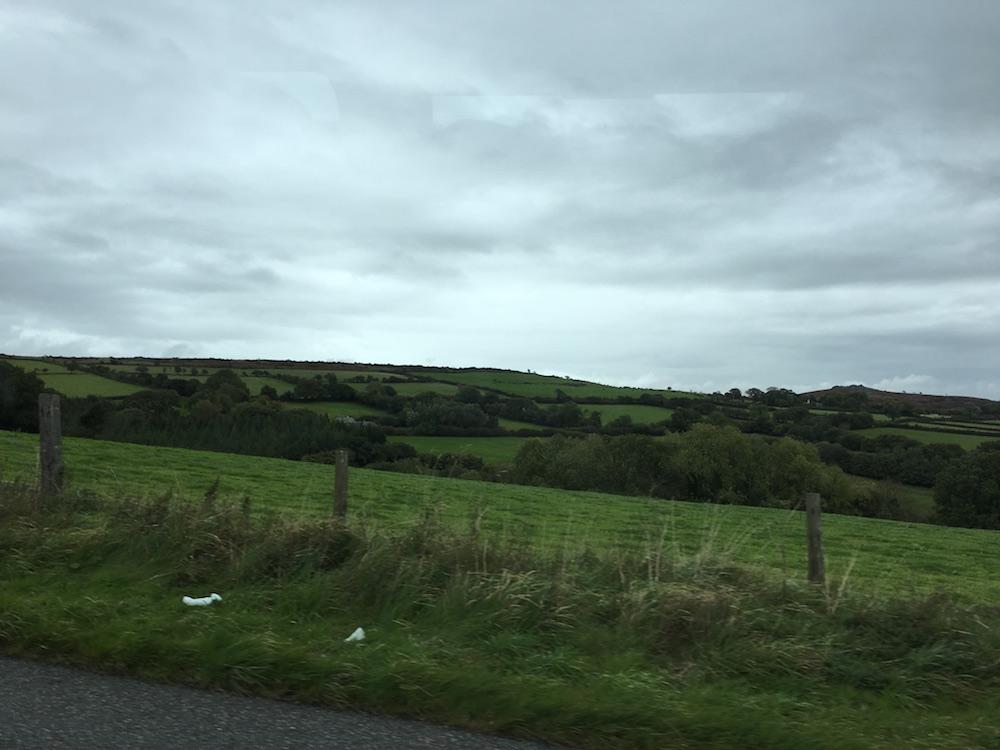 Darthmoor6